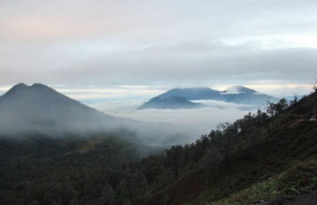 Gunung suket tertinggi di indonesia