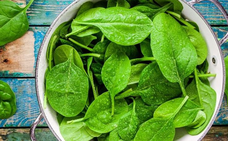 Spinach vegetable for low blood sufferer