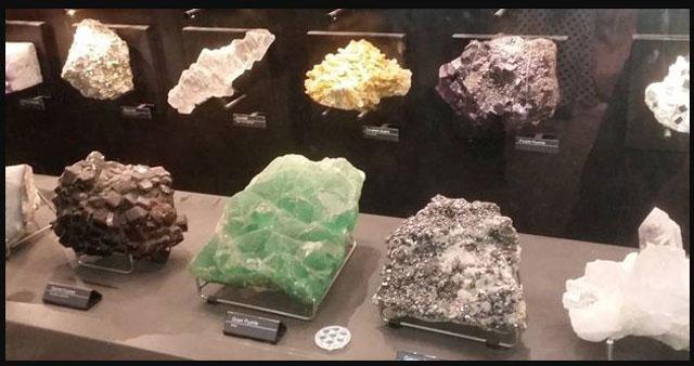 Ini dia Sejarah Museum Geologi Bandung