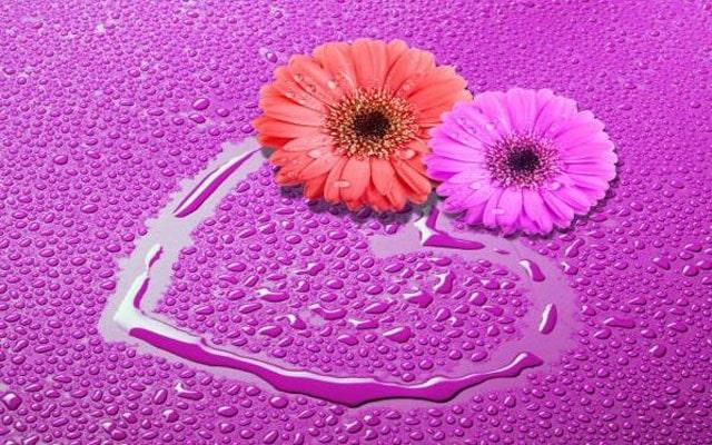Kumpulan Gambar Love, Cantik dan Romantis, Aneka Bentuk Love