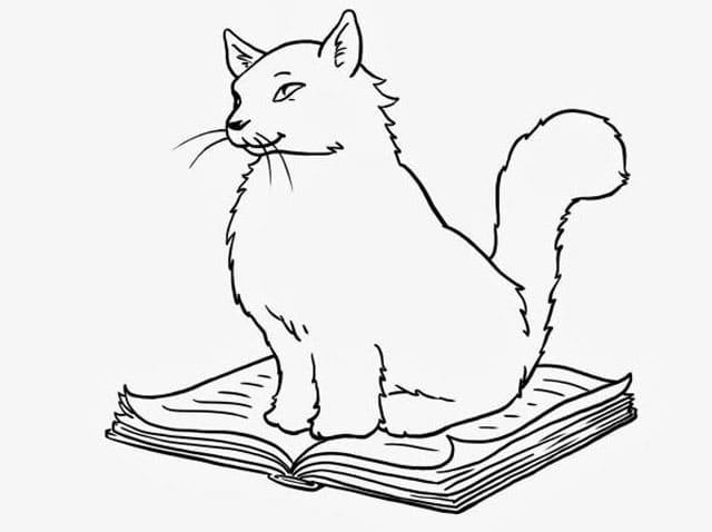 45+ Hewan sketsa kucing terupdate