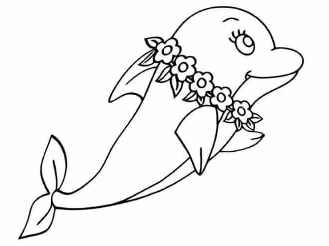 Mewarnai gambar anak lumba-lumba