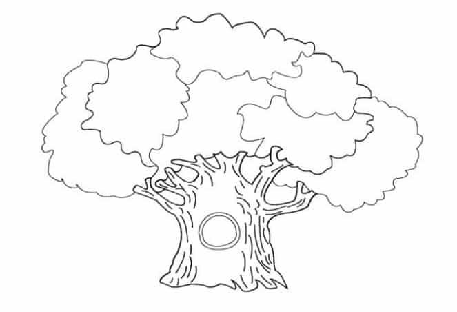 gambar pohon mewarnai