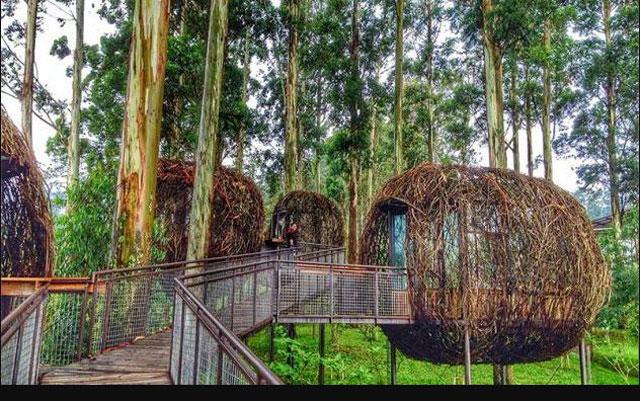 restoran lutung kasarung dusn bambu bandung