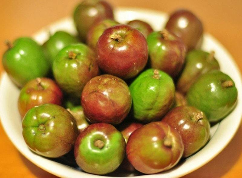 Health Benefits of Jocote Fruit, Spanyol Plum