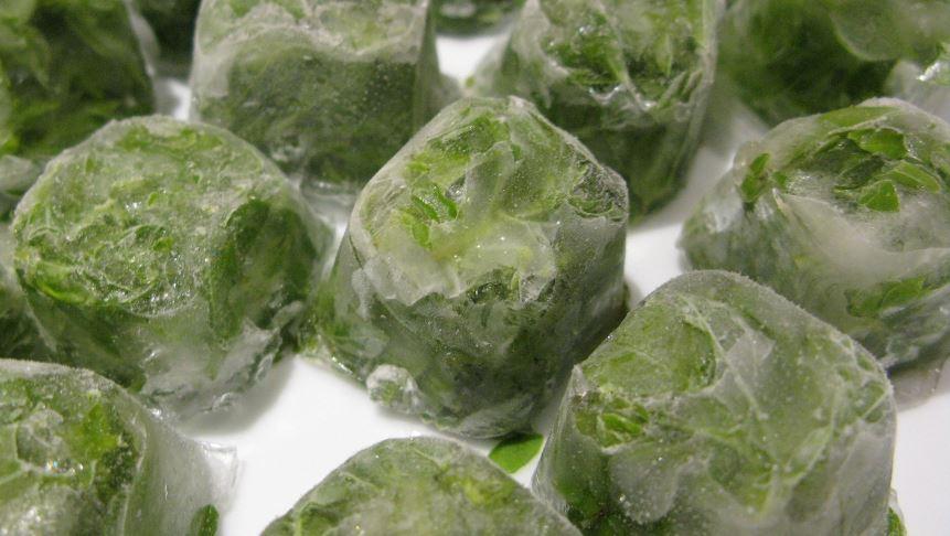 Ice Cubes Method to Freeze Basil
