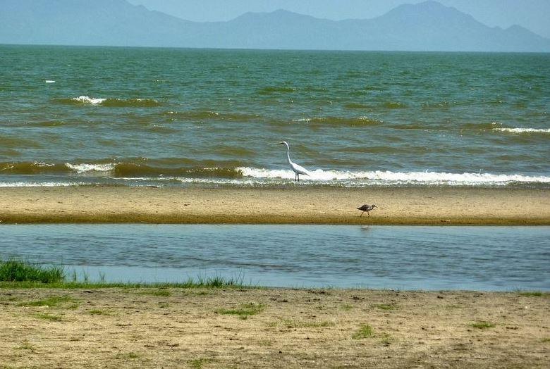 Lake Turkana4