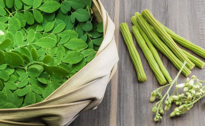 Moringa: Health Benefits and Side Effects