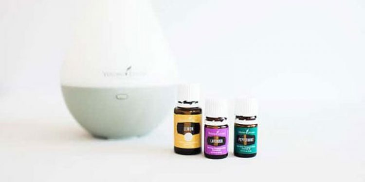 Best Essential Oil for Concentration and Focus
