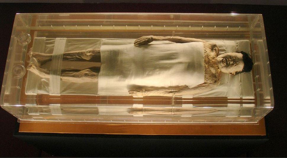Mystery of Lady Dais Preserve Mummy